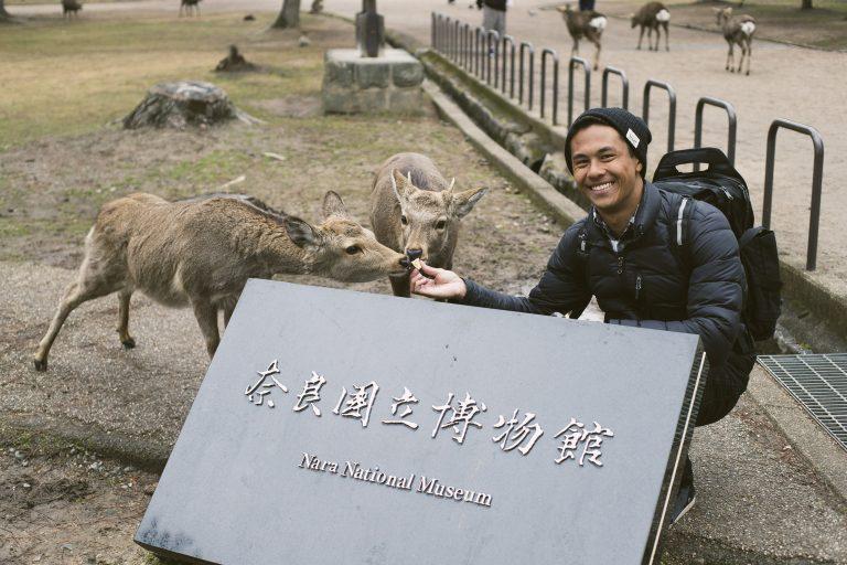 Nara, Japan Deer Park