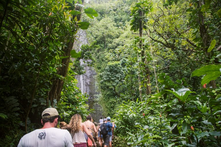 The Manoa Falls Hike – Oahu, Hawaii