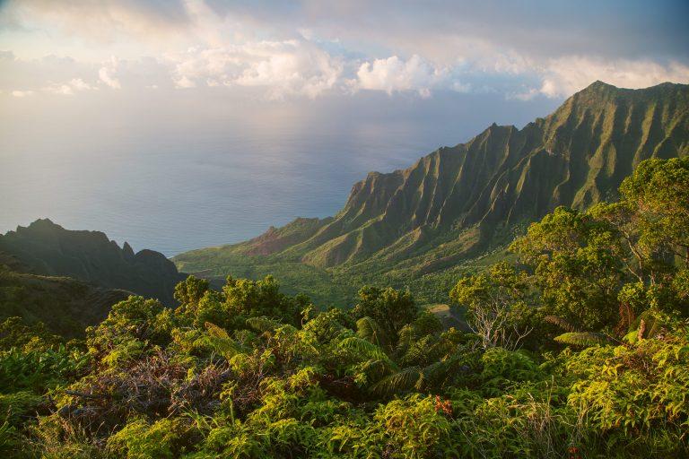 Your Hawaiian Islands Travel Guide